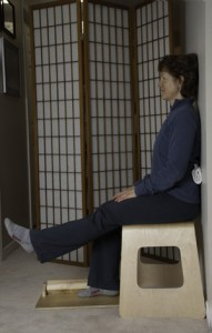 chair sit and reach test