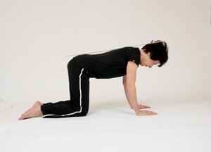 horse stance exercise • vertical