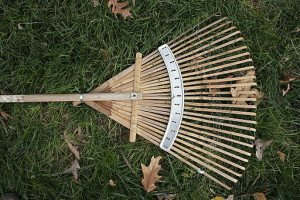 raking leaves safety tips