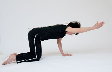 Horse Stance Horizontal | posture alignment therapy | ottawa physiotherapy