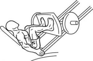 proper leg press form melioguide physiotherapy narrow
