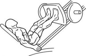 proper leg press form melioguide physiotherapy wide