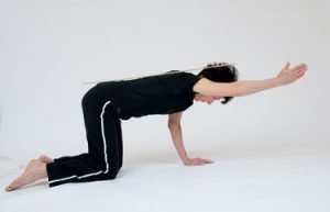 core exercises for hypermobility melioguide horse stance