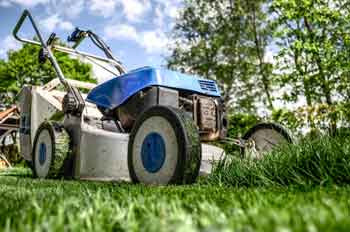 cutting grass knee replacement surgery guidelines