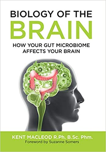 gut microbiome and osteoporosis melioguide
