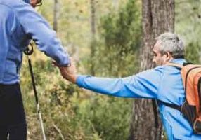 can osteoporosis be reversed melioguide physiotherapy