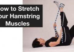 stretch hamstrings melioguide